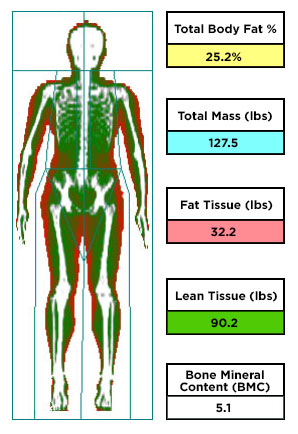 Fat and lean tissue map